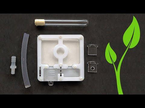 Инкубатор для муравьев «Росток 2.0»: от задумки до реализации