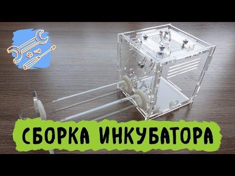 Инструкция по сборке инкубатора для муравьев