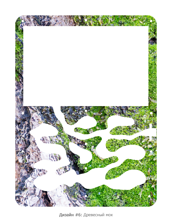 Муравьиная ферма «Старт» + муравьи