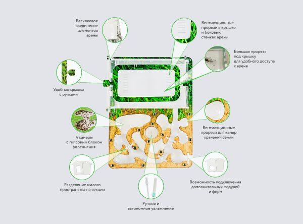 Муравьиная ферма «Джунгли» + муравьи