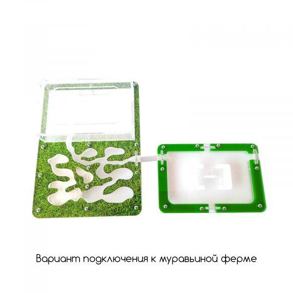 Модуль для муравьиных ферм «Атакама»