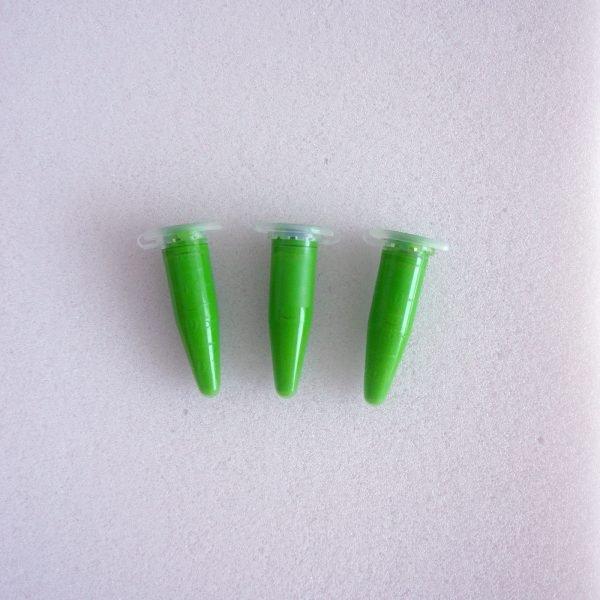 Краска для гипса зелёная (салатовая)