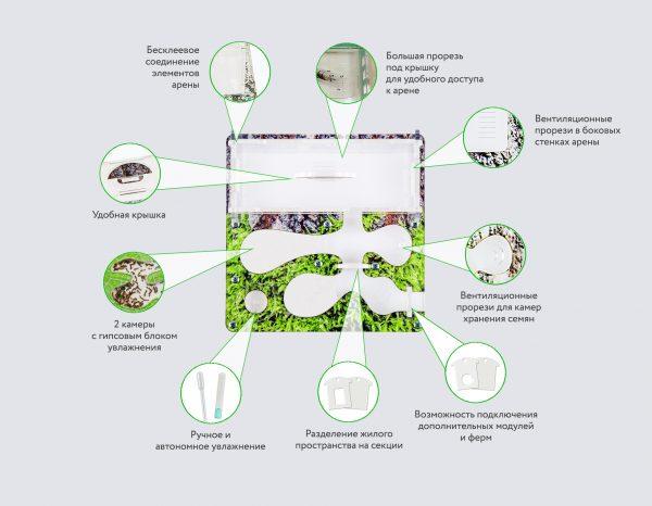 Муравьиная ферма «Тропики»